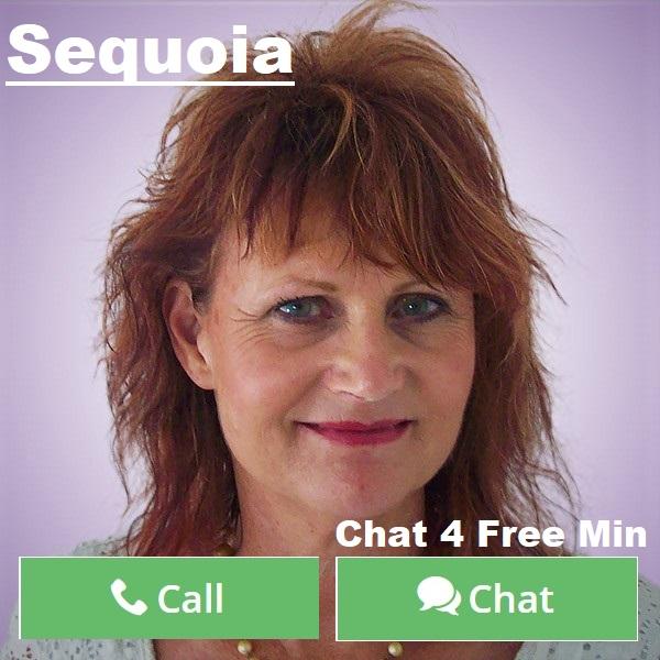 1sequoia3